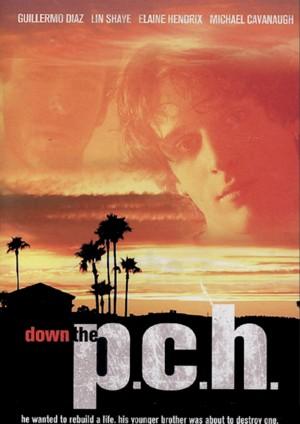 Down.The.P.C.H.2006.DVDRip.XviD-aAF